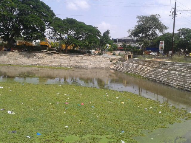 Kalyani cleaning at Kolar (10)