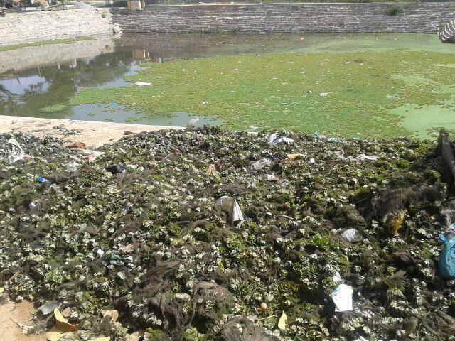 Kalyani cleaning at Kolar (2)