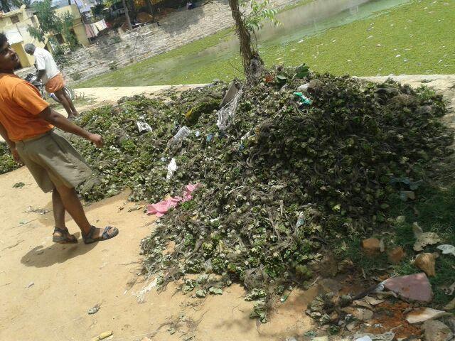 Kalyani cleaning at Kolar (3)