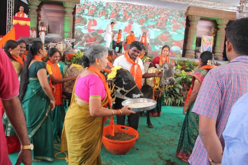 Gou-Ganga Vandana Dec 11-2015 (17)
