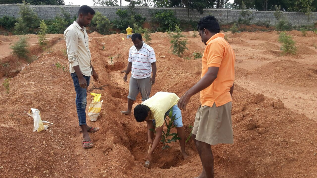 RSS observes Environment Day 2016 (17)