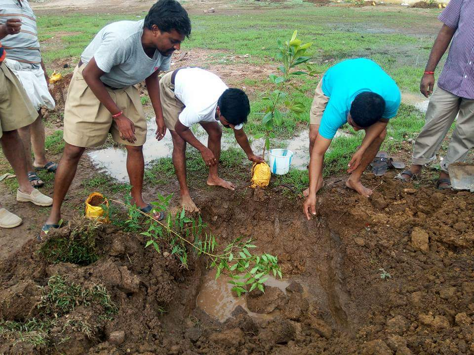 RSS observes Environment Day 2016 (5)