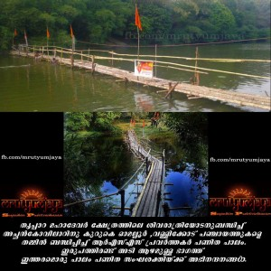 RSS Volunteers built bridge for Devotees in Kerala